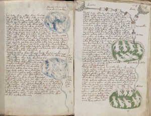 Voynich Manuscript, f84v placed next to f78r