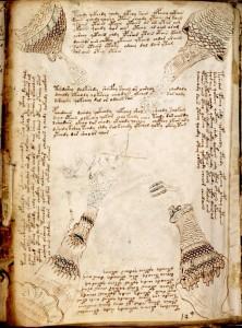 Voynich Manuscript f86v3 - 600x808