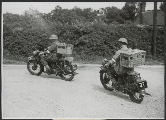 Pigeon dispatch riders on the road